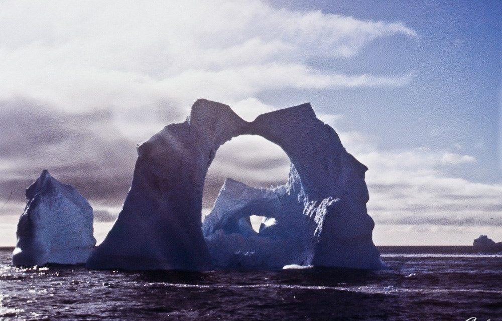 La hibernación de Tornarratos: gracias y hasta la vuelta
