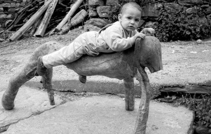 neno na madeira
