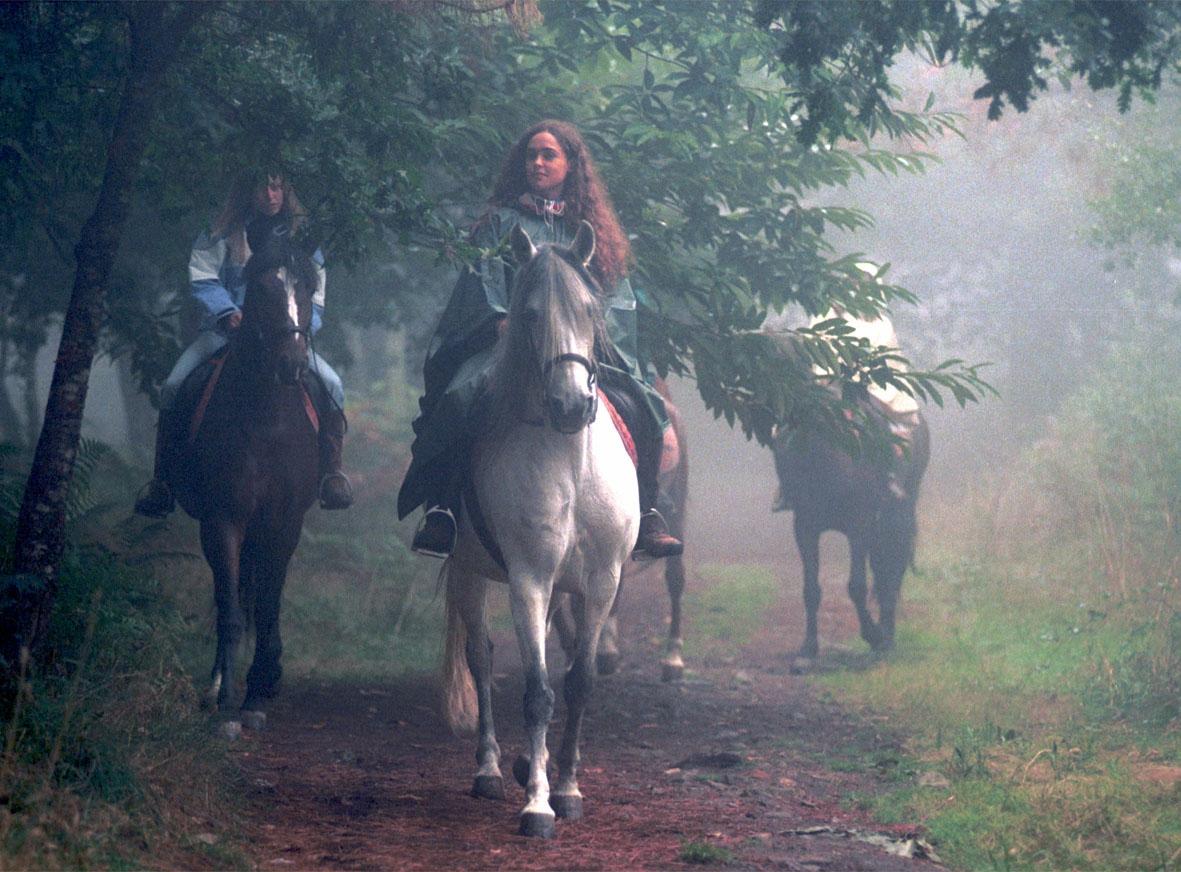 viaxeiras_caballo_niebla