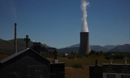 ¿Dónde está la biomasa?, ¿la biomasa dónde esta?