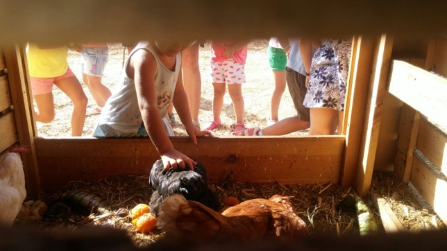 El Boalo: Residuo Cero en la aldea gala del Guadarrama
