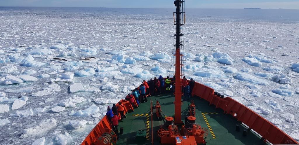 hesperides circulo polar foto Armada Española