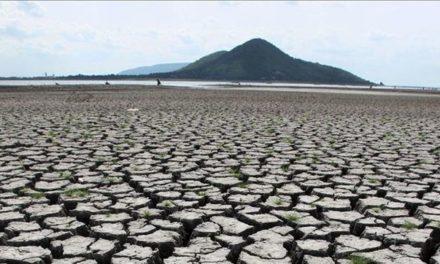 Agua 2019: cuatro mil millones de personas pasan sed