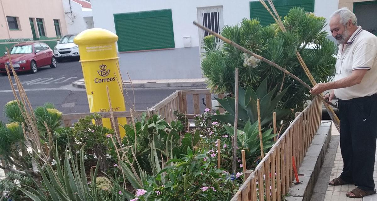 Balada del Tamaduste (2): el huerto de Pepe